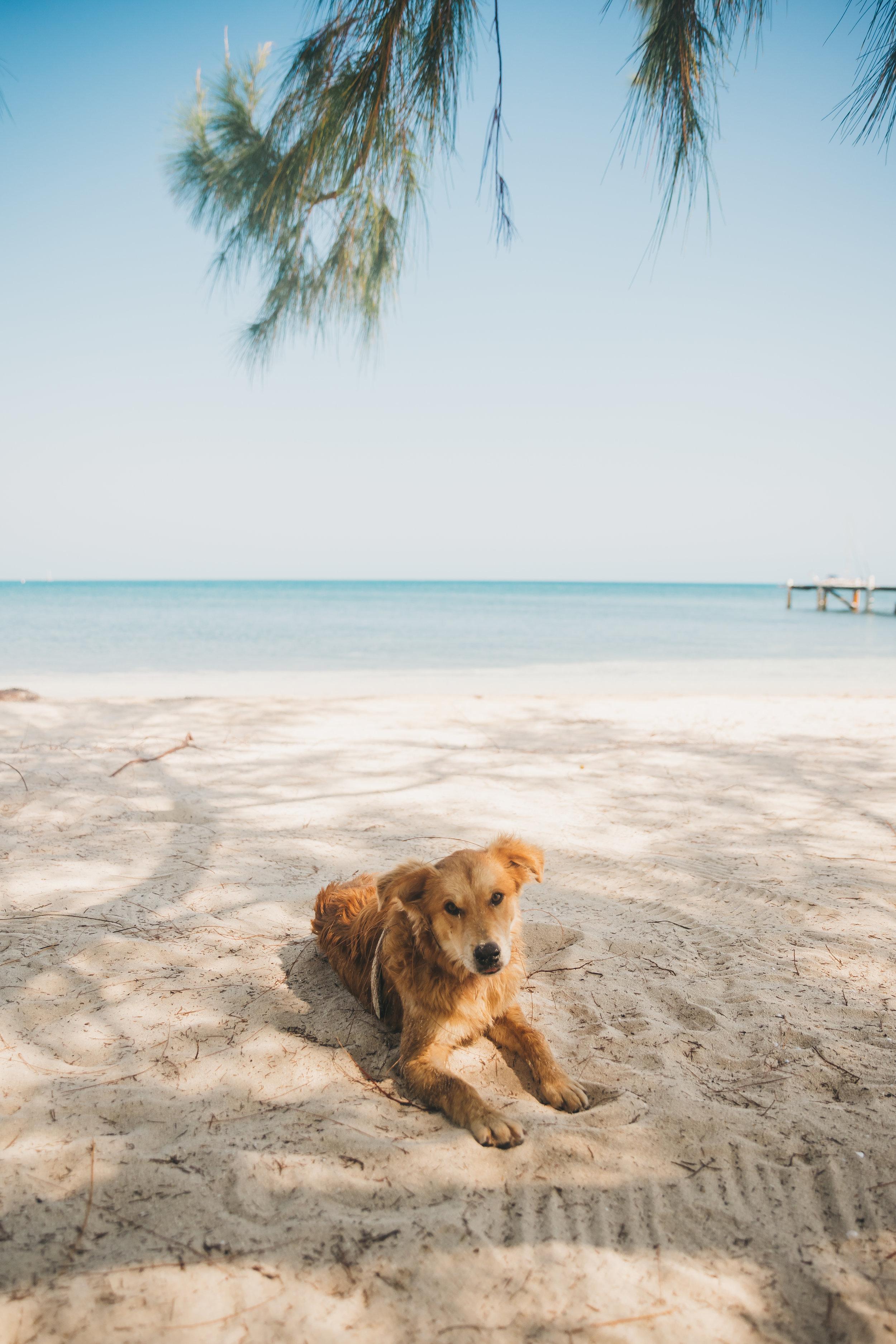 Belize 17.jpg