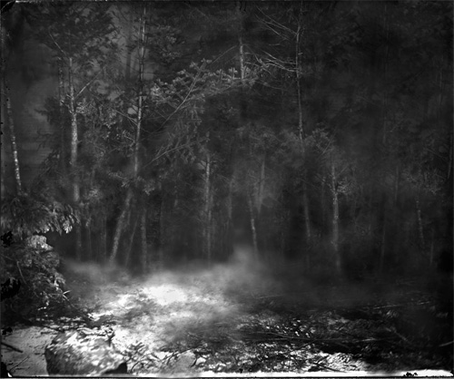 pre-colonial forest, digital print,8ft x 10ft, 2008