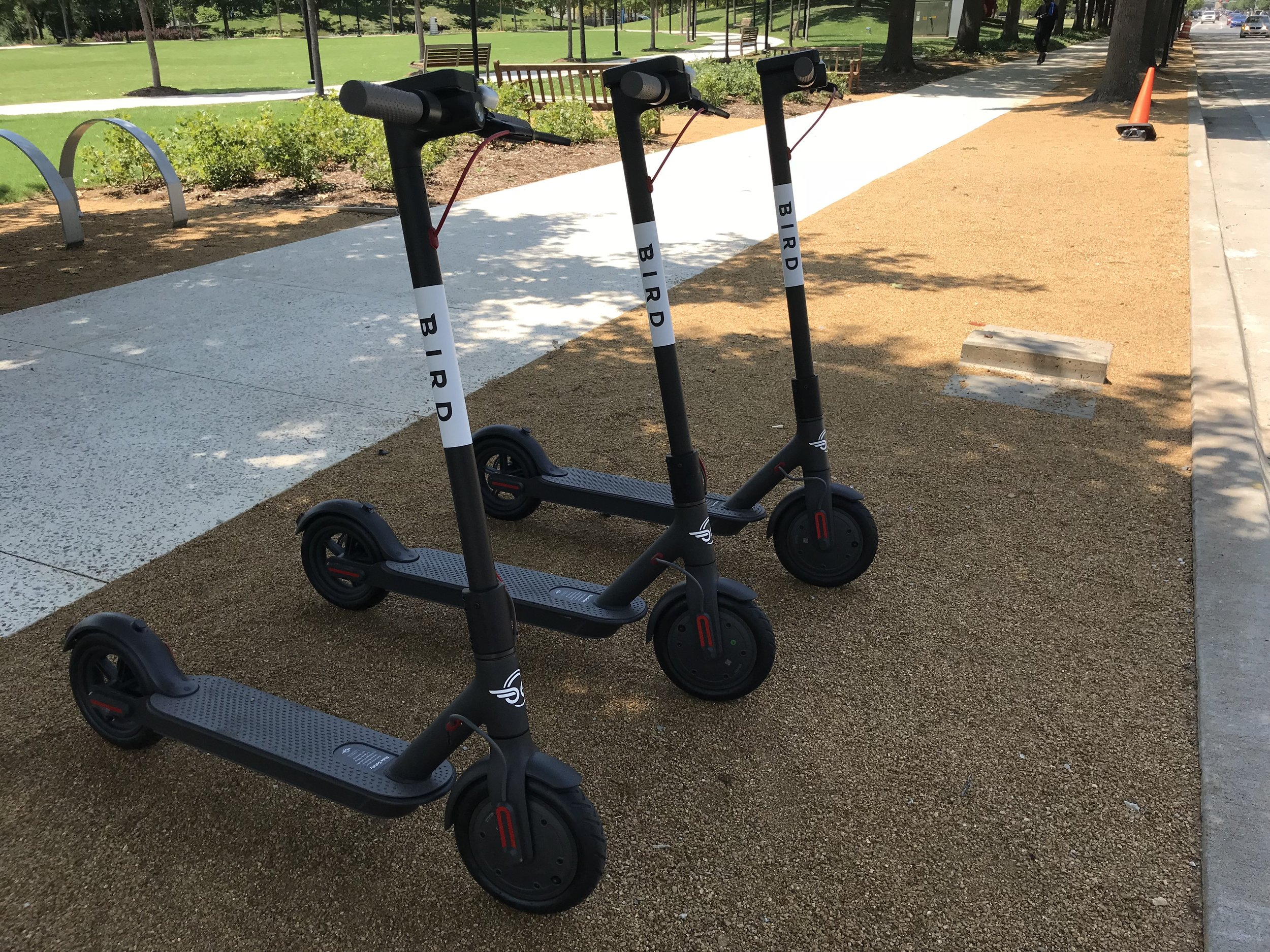 An Illegal Nest - Three Bird Scooters Parked Illegally at the Myriad Gardens in Oklahoma City