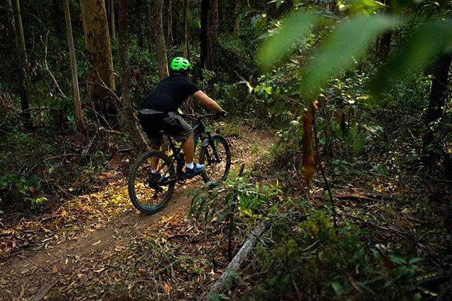@danmanclimbingman dropping in through some of the technical corners of the @kiwarrakdownhill park • • • • • #australia #mountainbike #sydney #mtb #seeaustralia #melbourne #mountainbiking #australiagram #queensland #mtblife #exploreaustralia #ig_australia #downhill #brisbane #perth #mountaindew #dh #mountainbiker #westernaustralia #mountainbikes #discoveraustralia #mountaincreek #mountaineers #mountainbikersbr #riding #sonyalpha #taree #nsw