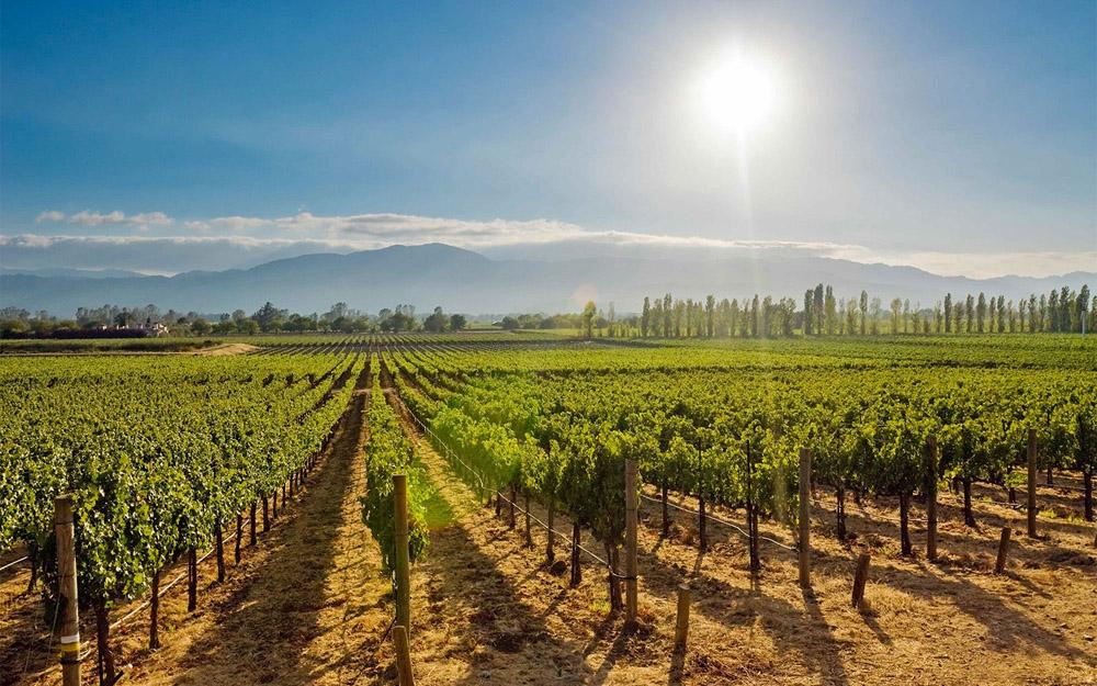 3-Napa-Valley-California-USA-Exclusive-Property-Solstice-Luxury-Destination-Club.jpg