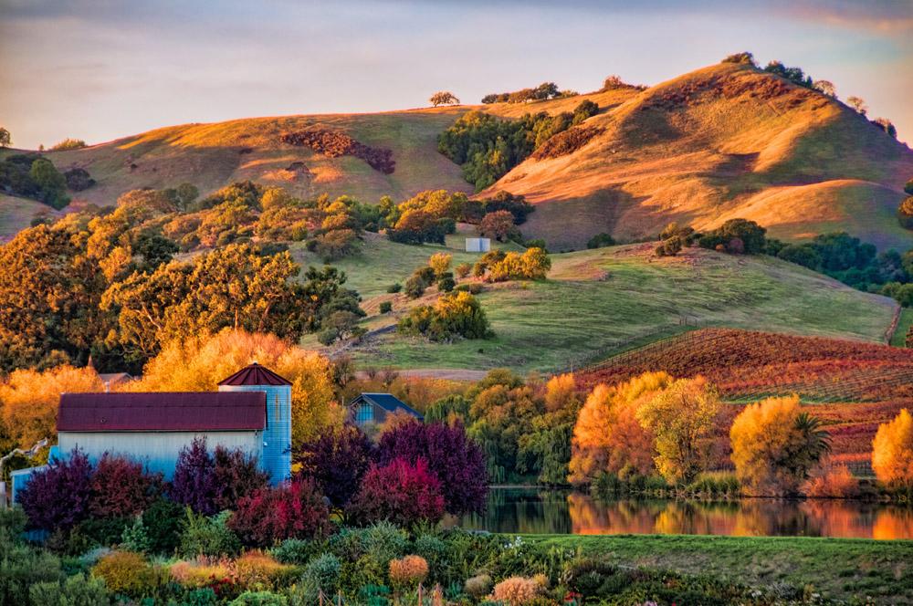 4-Napa-Valley-California-USA-Exclusive-Property-Solstice-Luxury-Destination-Club.jpg