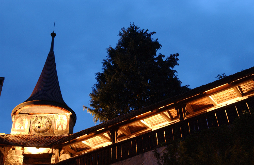 7-History-Castle-of-Lucens-Switzerland-Solstice-Luxury-Destination-Club-Exclusive-Worldwide-locations.jpg