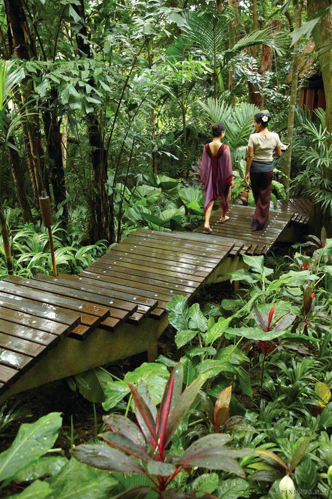 7-Tropical-Paradise-Surroundings-Koh-Samui-Thailand-Additional-member-property-Solstice-Club.jpg