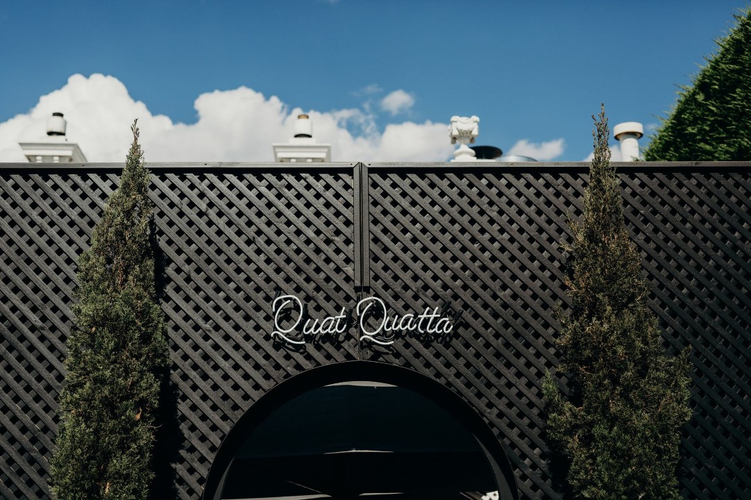 Qua Quatta Neon.jpeg