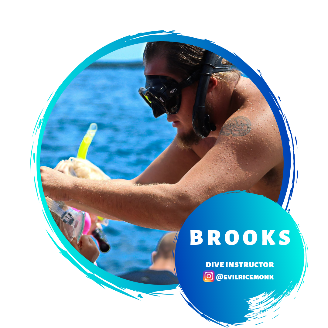 Brooks  Dive Instructor