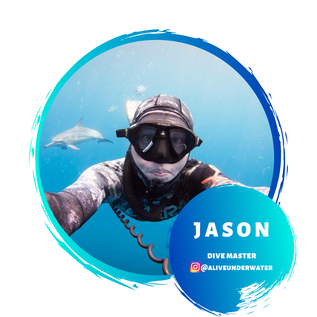 Jason  Dive Master