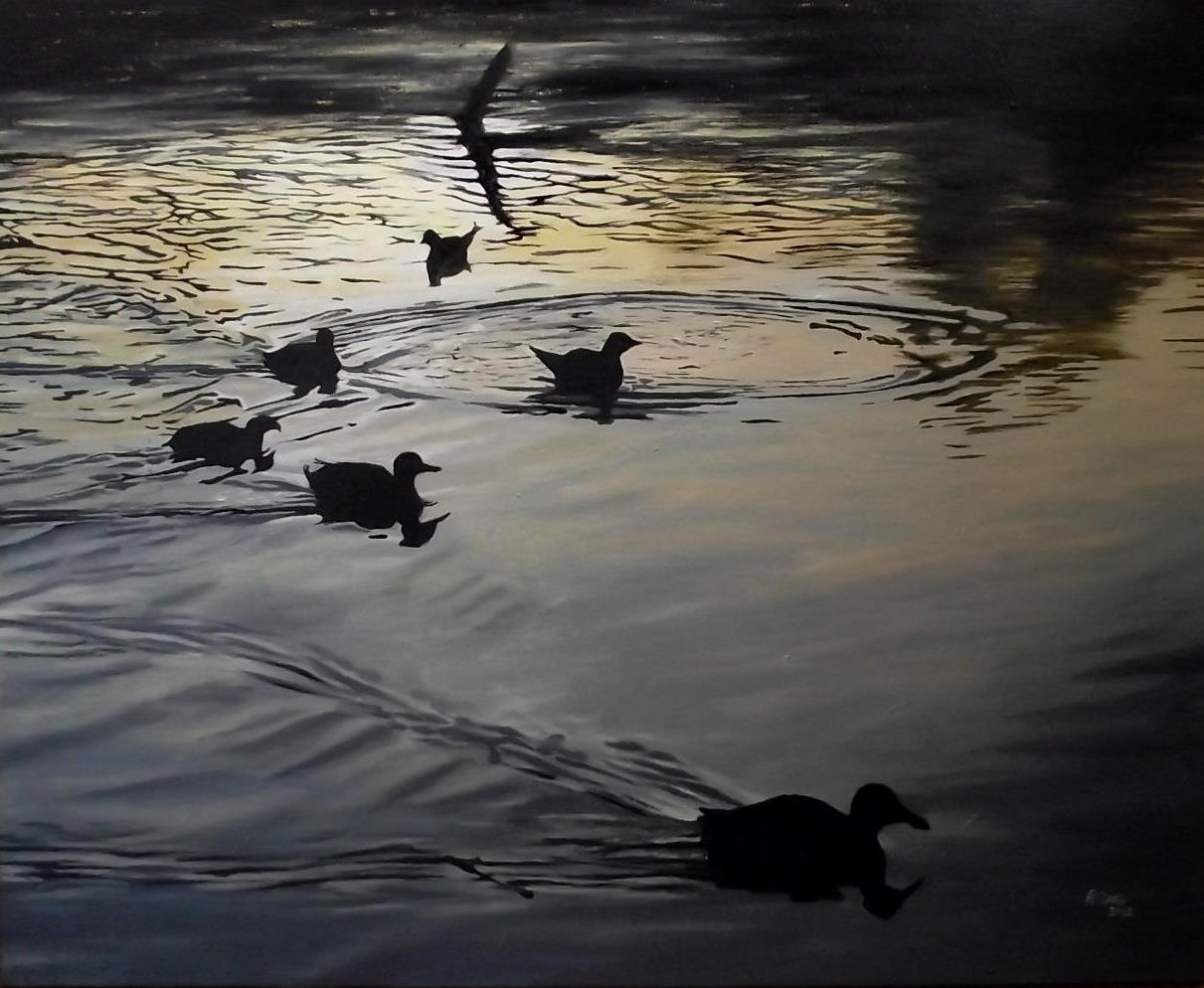 ducks_at_sunset__by_rvc89-d59xf0o.jpg