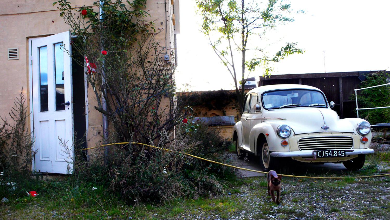 dør-bil-kat©FotoBenteJæger.jpg