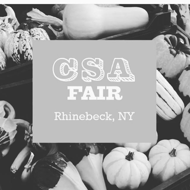 This weekend you will find field at the CSA fair in Rhinebeck from 11-2 Hosted  by @hudsonvalleycsa @hudsonriverexchange @glynwoodorg  Stop by and ask us how to transform your medicine chest. Wellness boxes will be available for spring.  #fieldwellness #botanicalmedicine #herbalife #herbalremedies #herbalcsa #hudsonValley #csa #findafarmer #knowwhereyourfoodcomesfrom