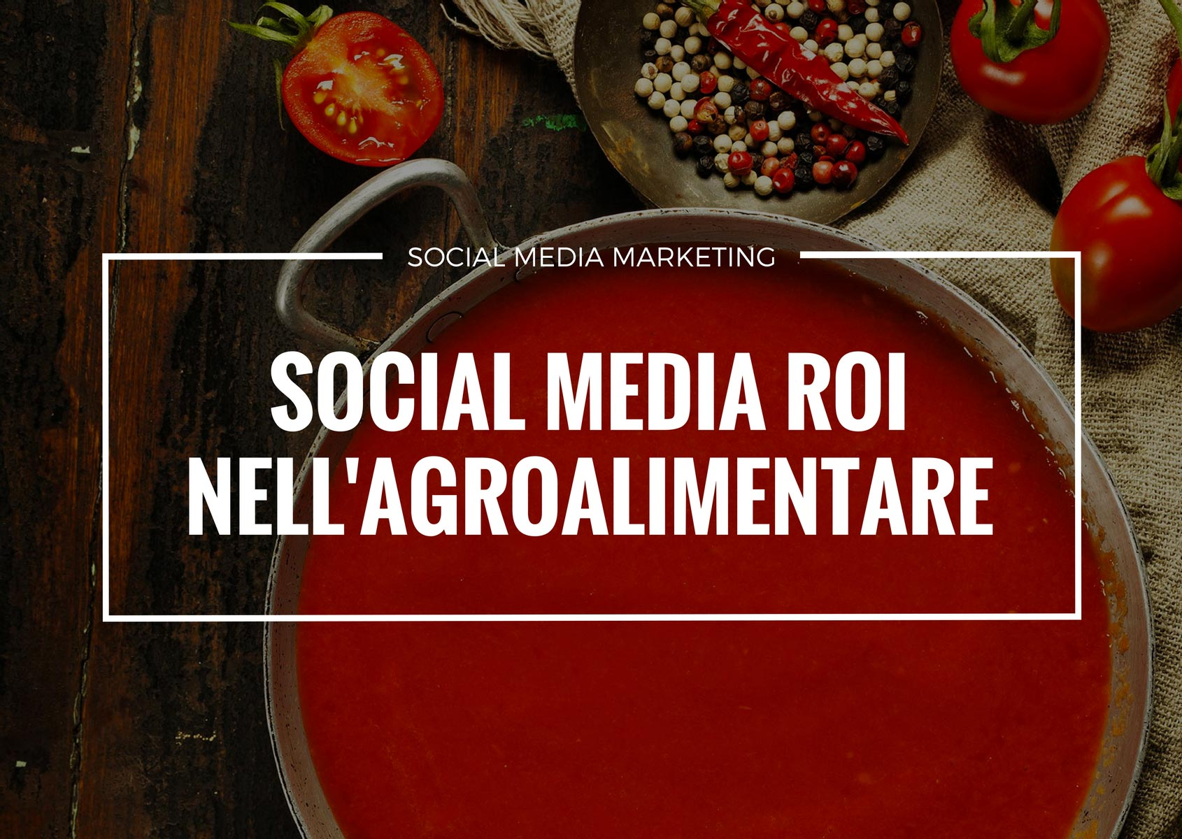 social media roi agroalimentare