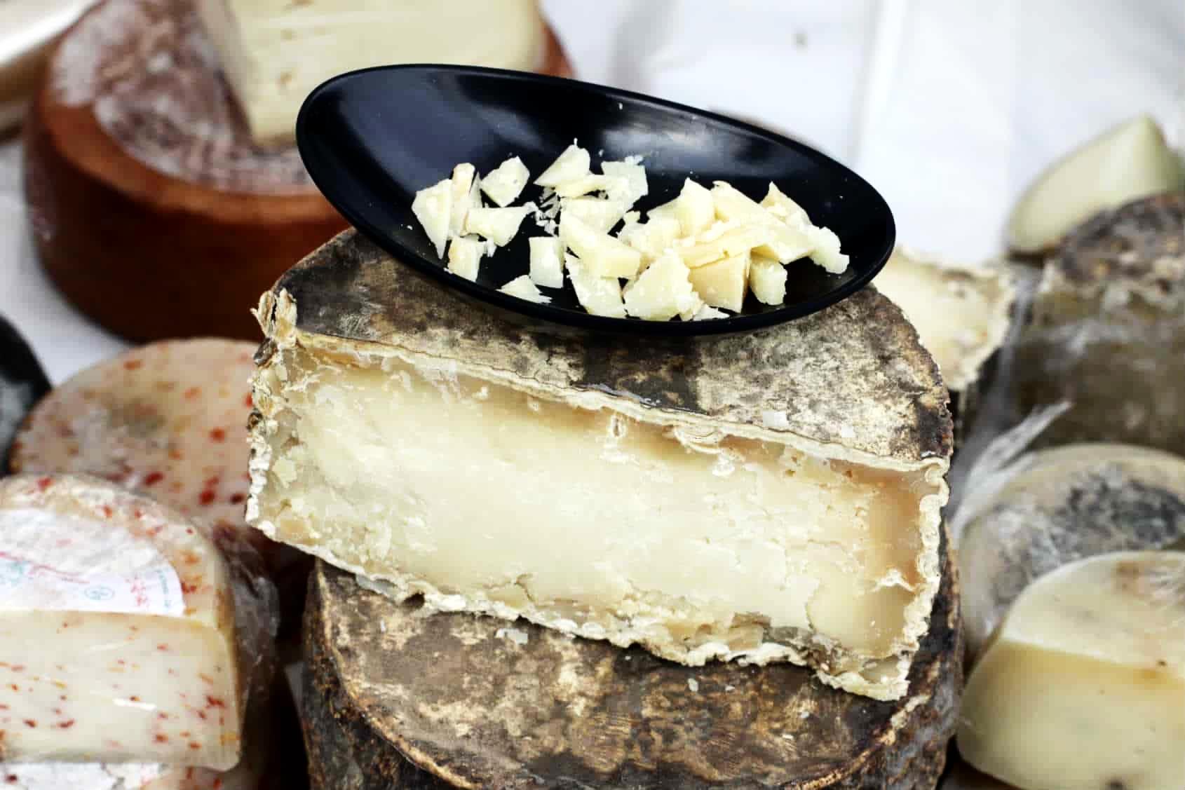 organizzare una degustazione e promuoverla con il supporto del marketing locale digitale e valorizzazione del formaggio pecorino