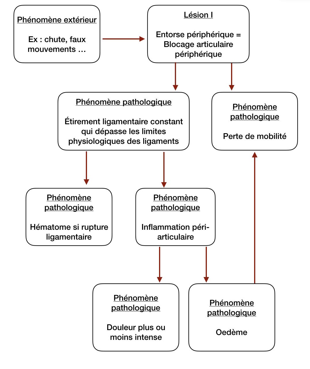 Mécanisme de l'entorse périphérique