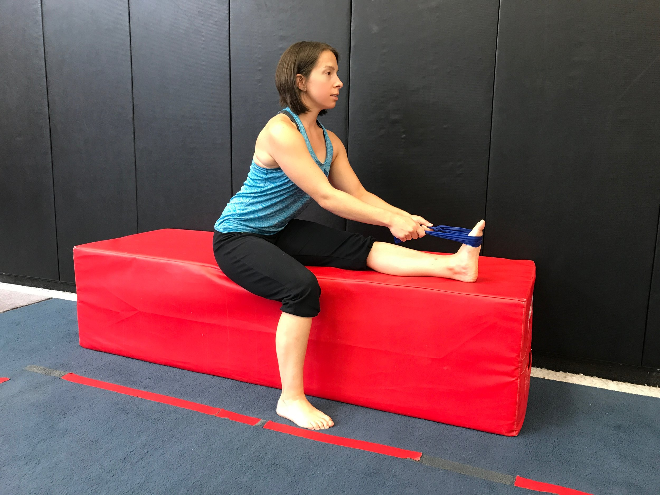 Using a strap, pull the foot/toes back and lean from the waist (keeping your back flat) until a stretch is felt in the back of the leg.
