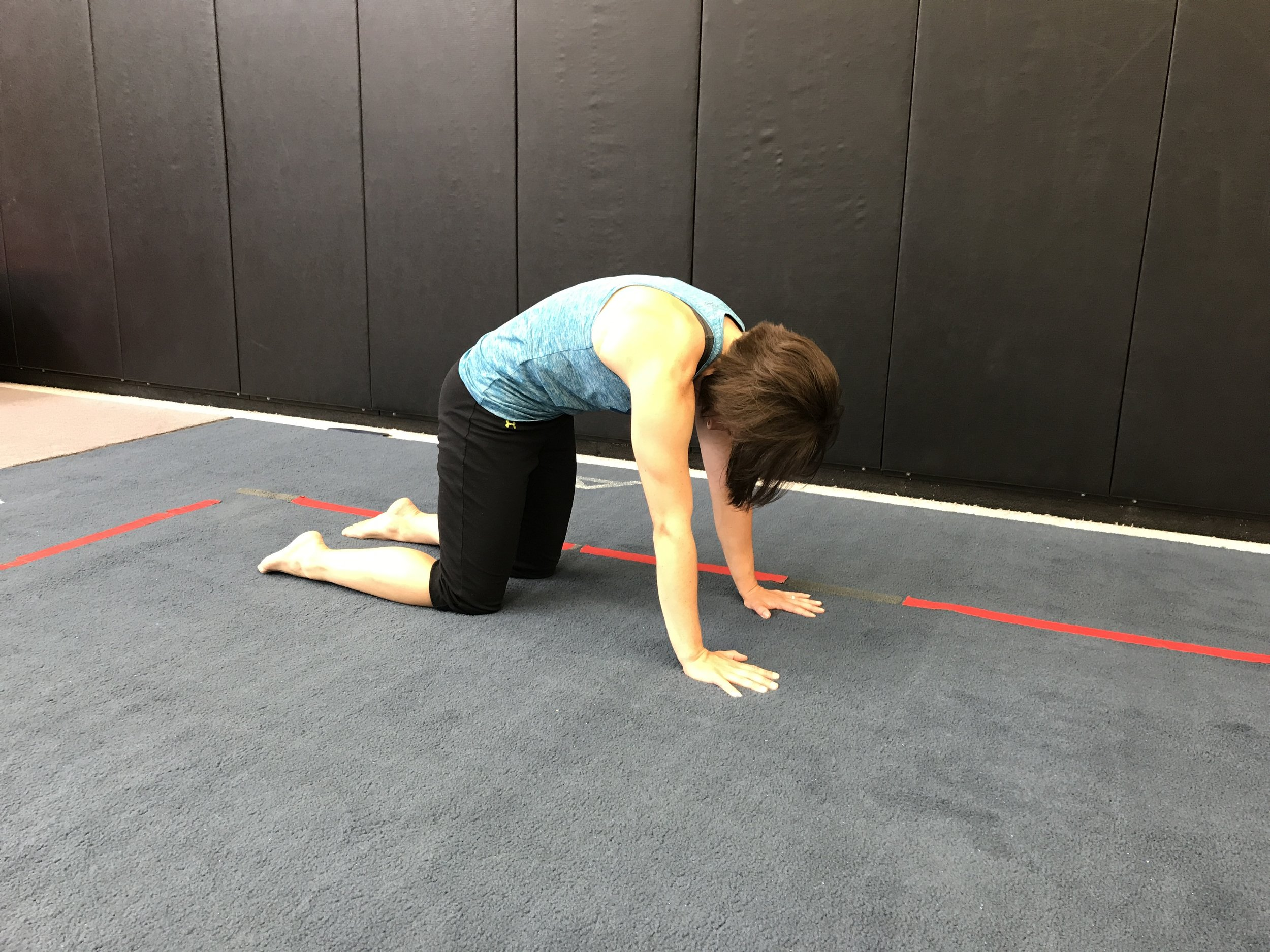 Then, round the back as much as possible - drop the head down to increase the stretch. Think of pressing the spine up into the ceiling.