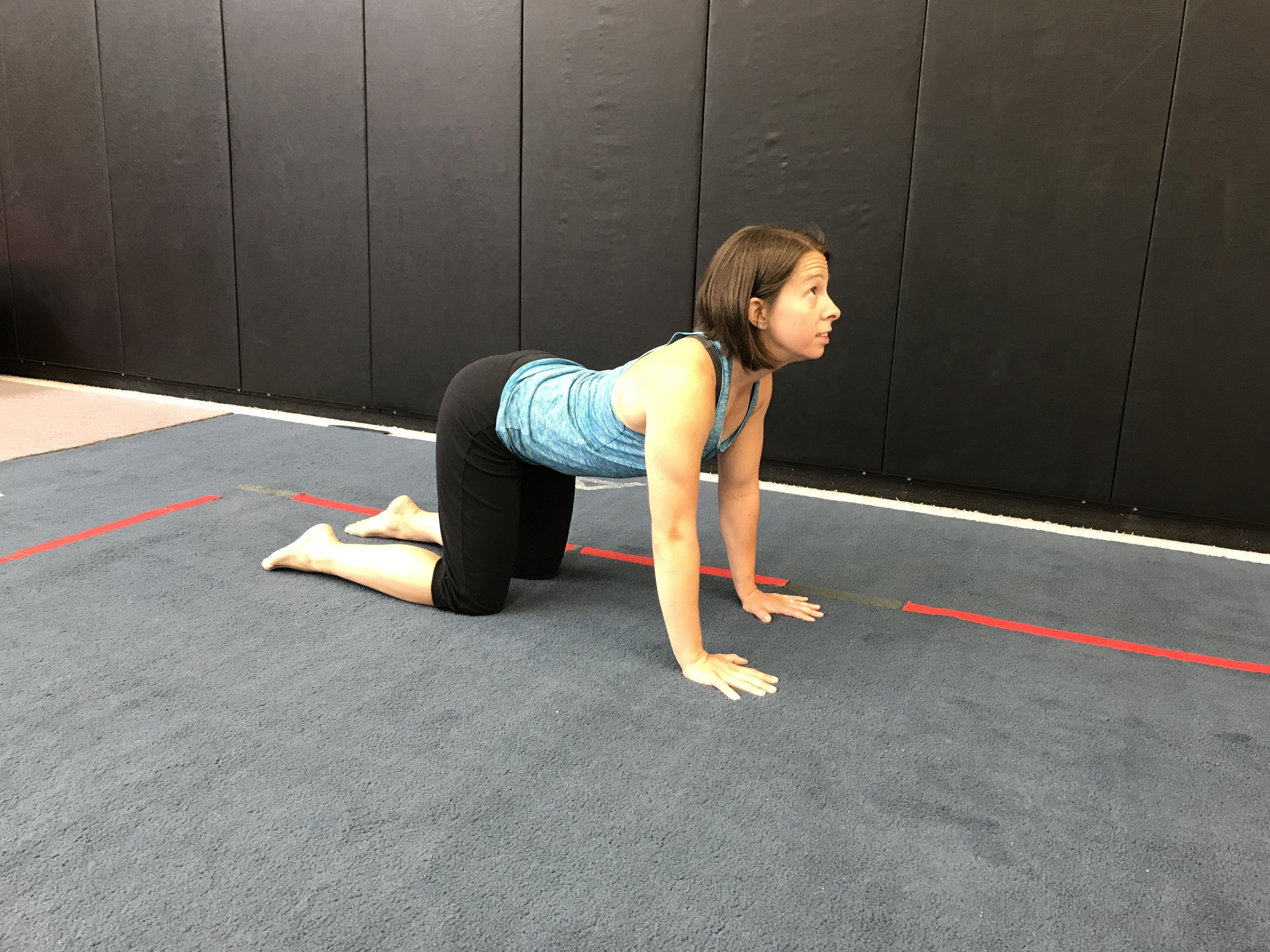 After than, drop the belly down and arch as much as possible. Lift the head to increase the stretch  (*Note - I am sadly quite inflexible in this direction. You will likely see more motion).