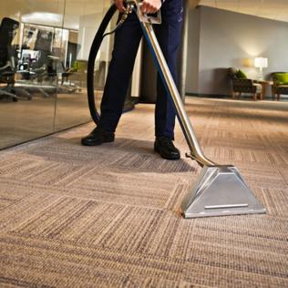 carpet page pic 01 - vacuum.png
