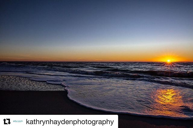 @kathrynhaydenphotography giving me all the inspiration I need for a guided imagery mediation I need today in the thick of this dreary, freezing cold, sick filled winter 😂🤧🏄🏻♀️. #igniteinnerbalance #guidedimagery #supportsmallbusiness #destinationfamilypicsnextyear🤣