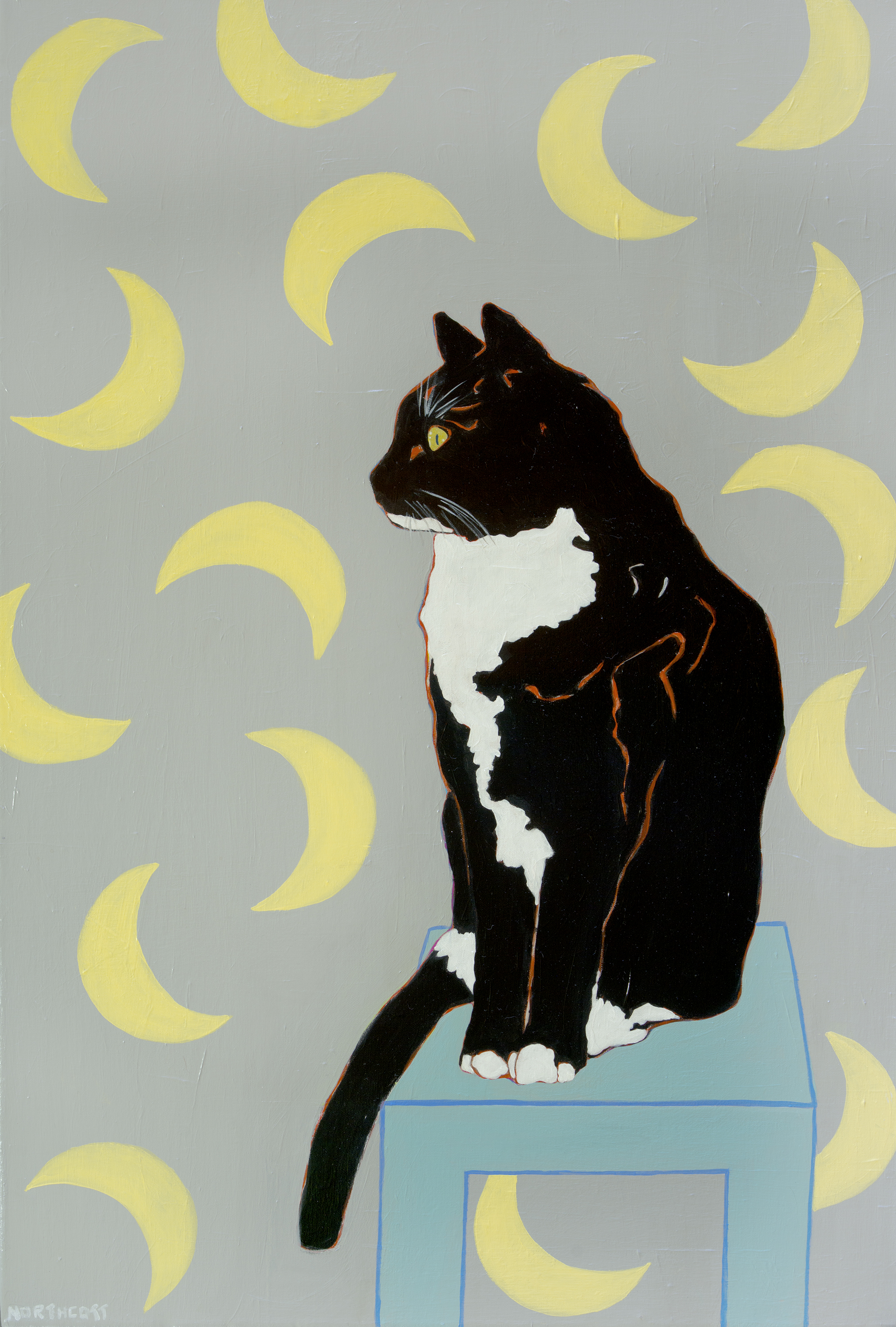 Cat in the Moon Room - Full Size