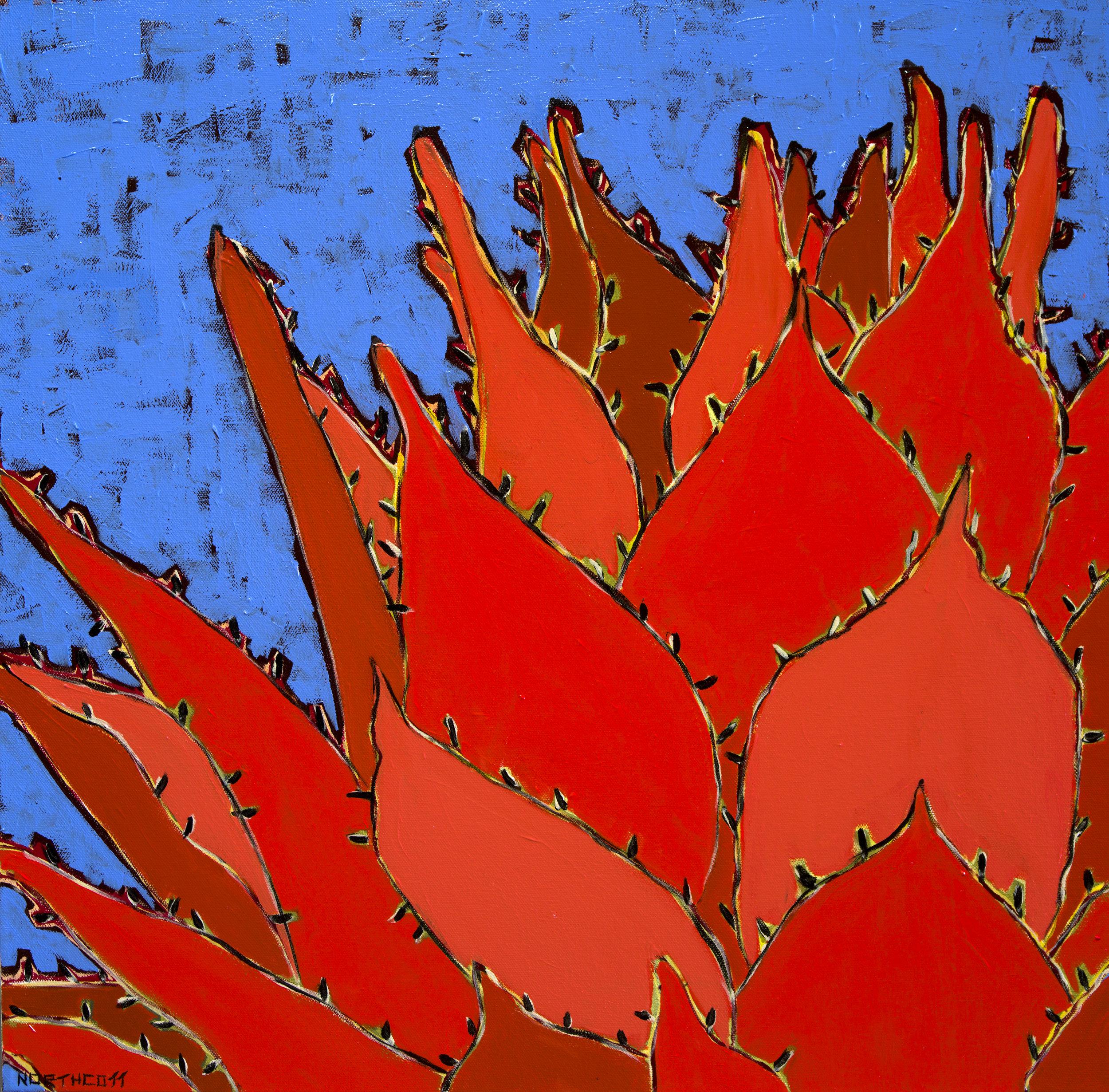 Agaves - Big Beautiful Leaves . . .