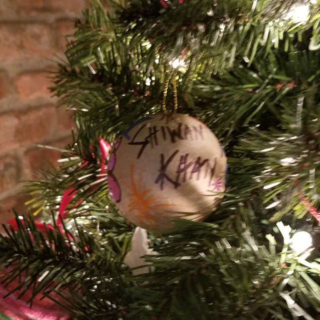 Charlie's house is complete with the official @shiwankhan_official ornament from the Christmas show last night!