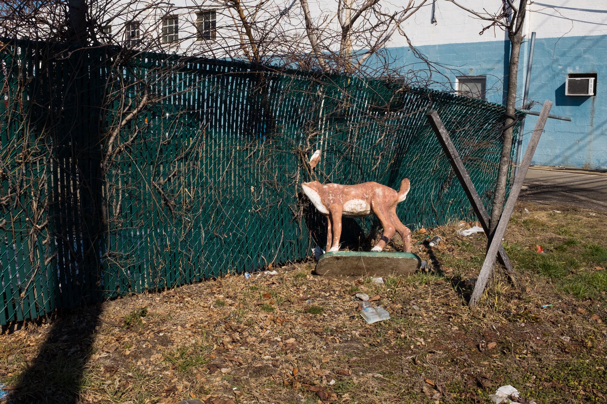 new-york-city-street-photographer-Zachary-Cabanas-5