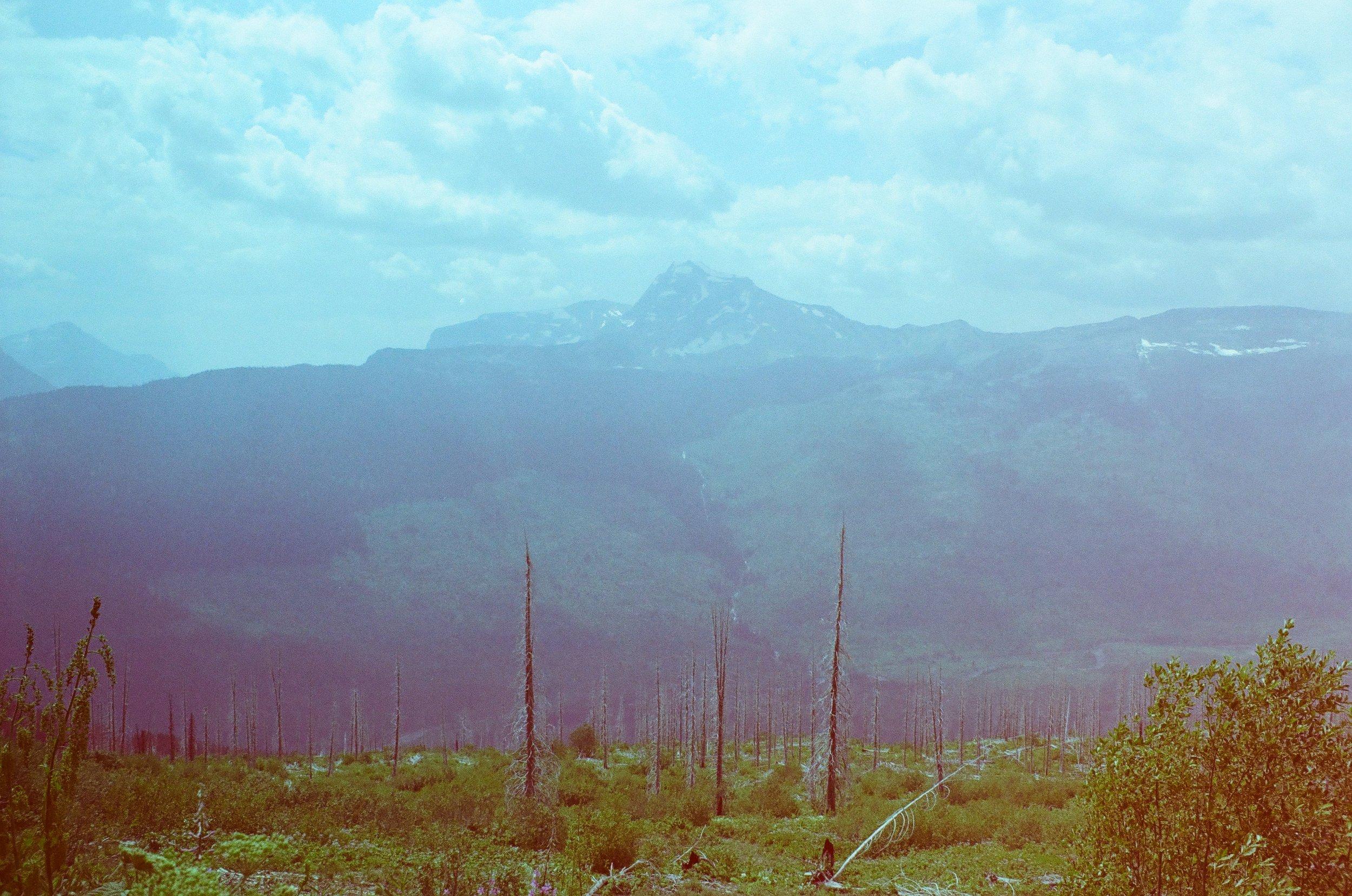 Glacier National Park on Revolog 35mm film