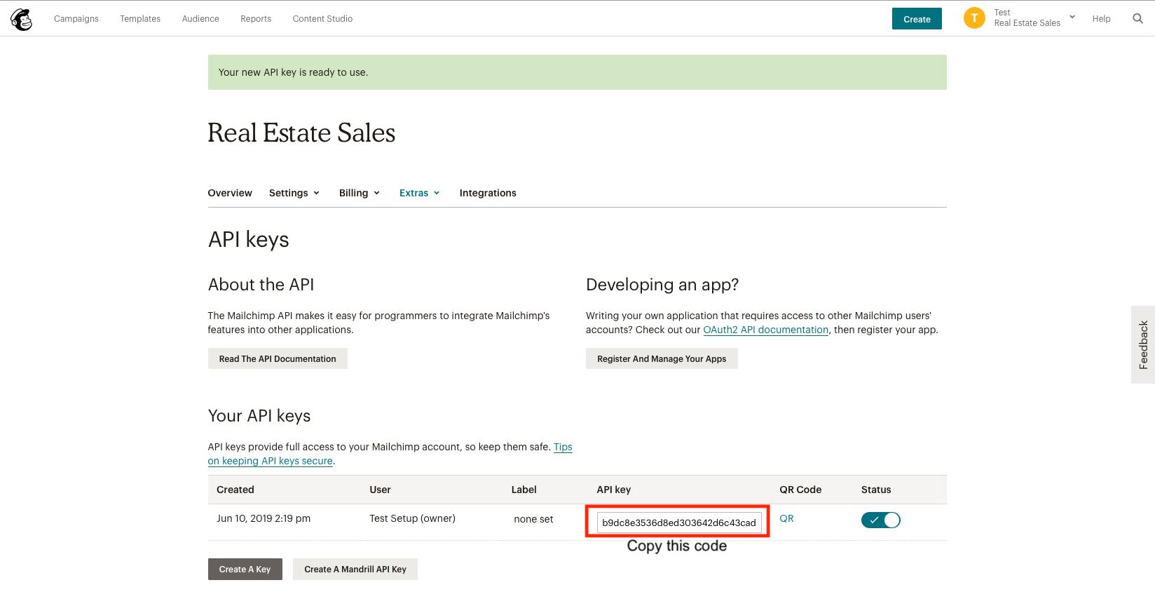 Real Estate Drip API Key Copy