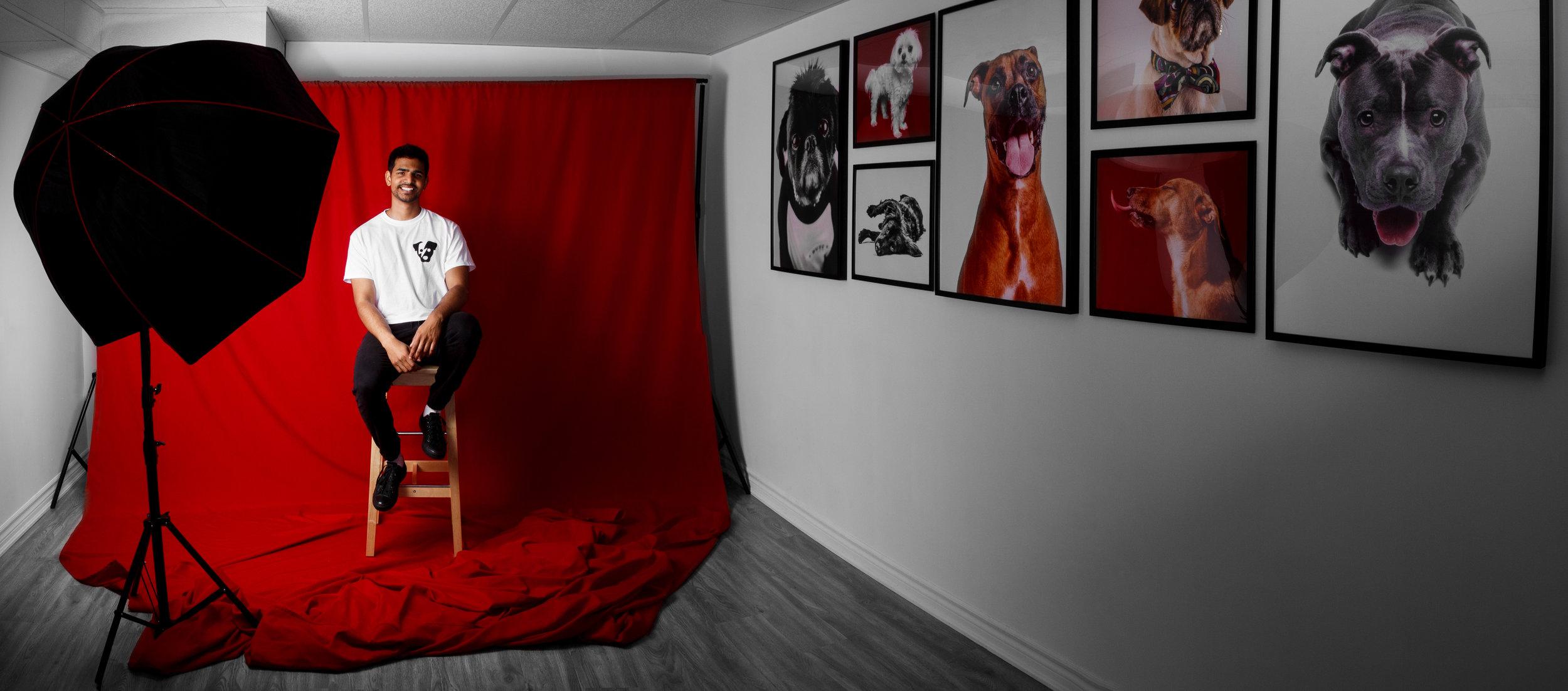 Brent D'Silva Dog Photography.jpg