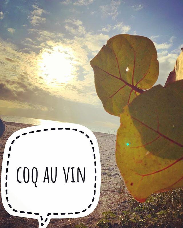 Coq au vin #chelseagalleries #womanownedbusiness #senselessviolence #noncorporate #steakaupoivre #coldweatherfood