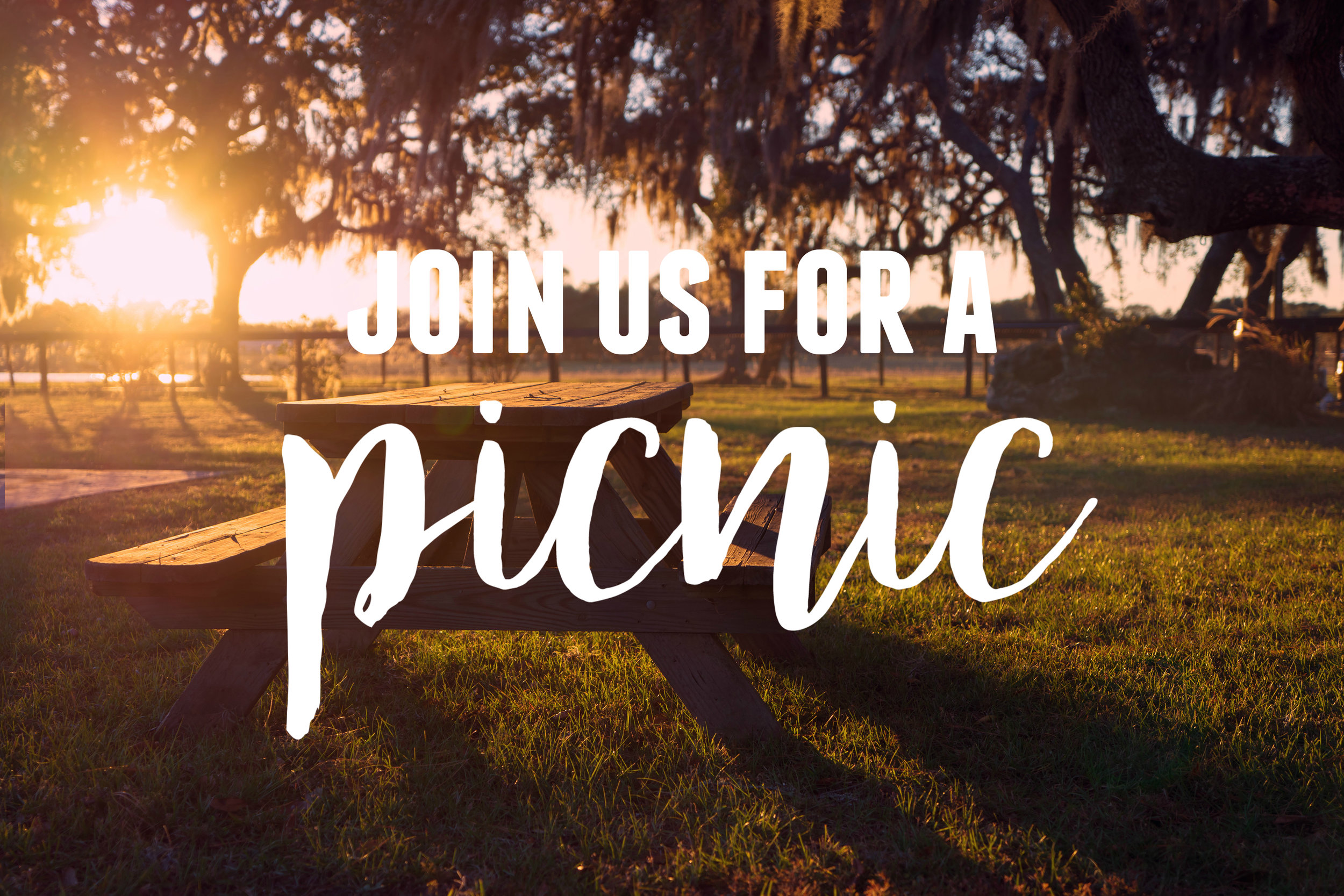 churchwide picnic 2018 graphic.jpg