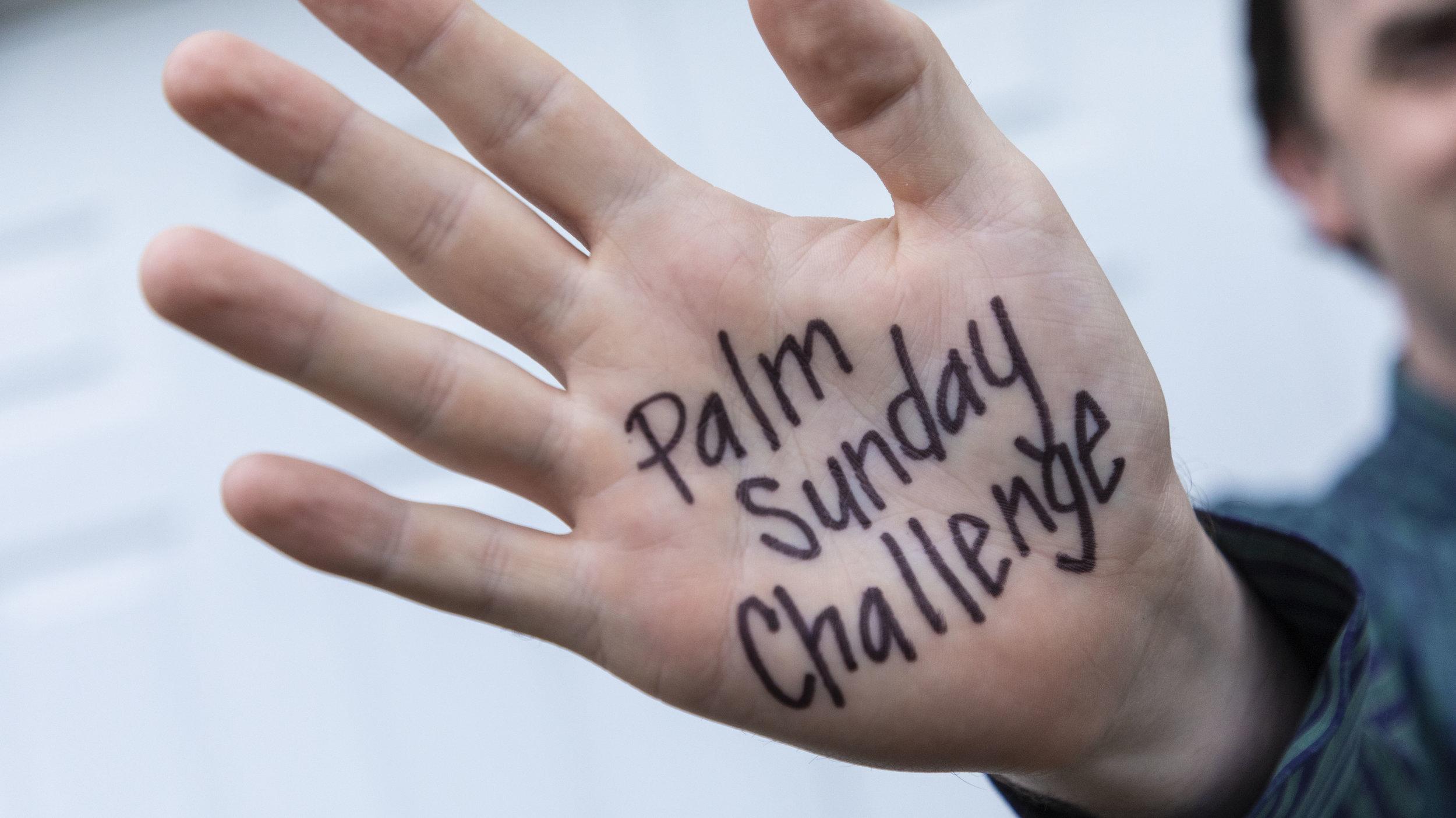 Palm Sunday Challenge.jpg