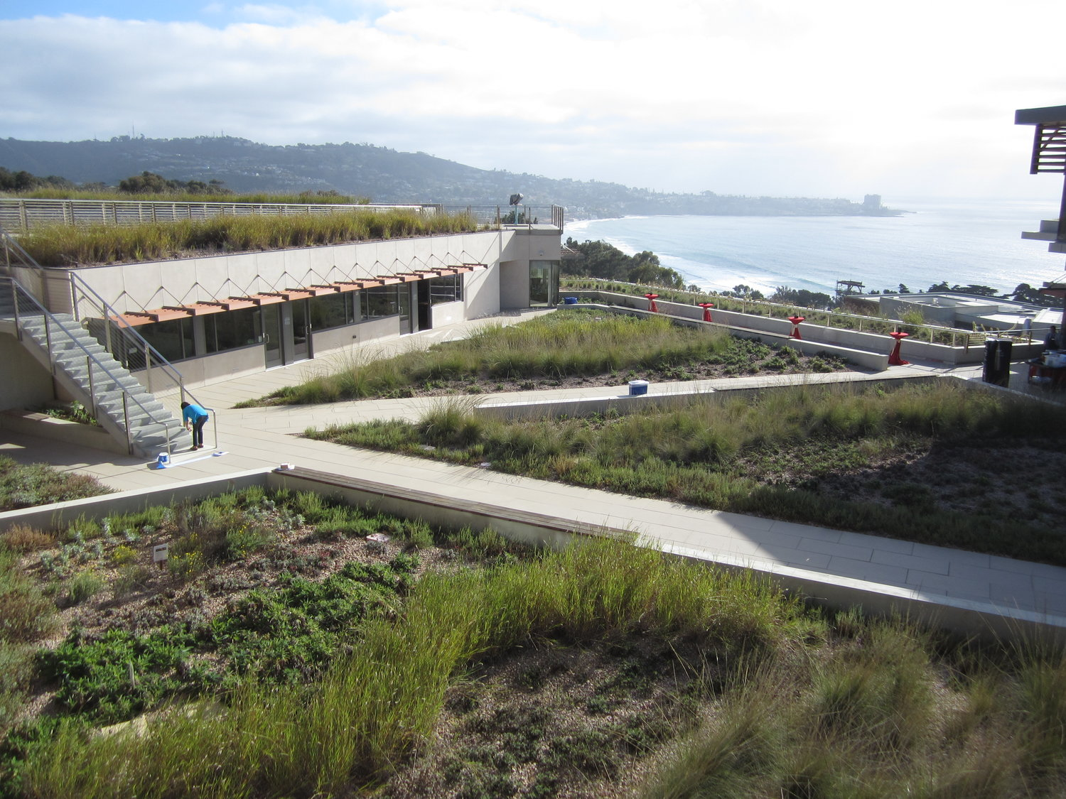 About Green Roofs Green Roofs For Healthy Cities