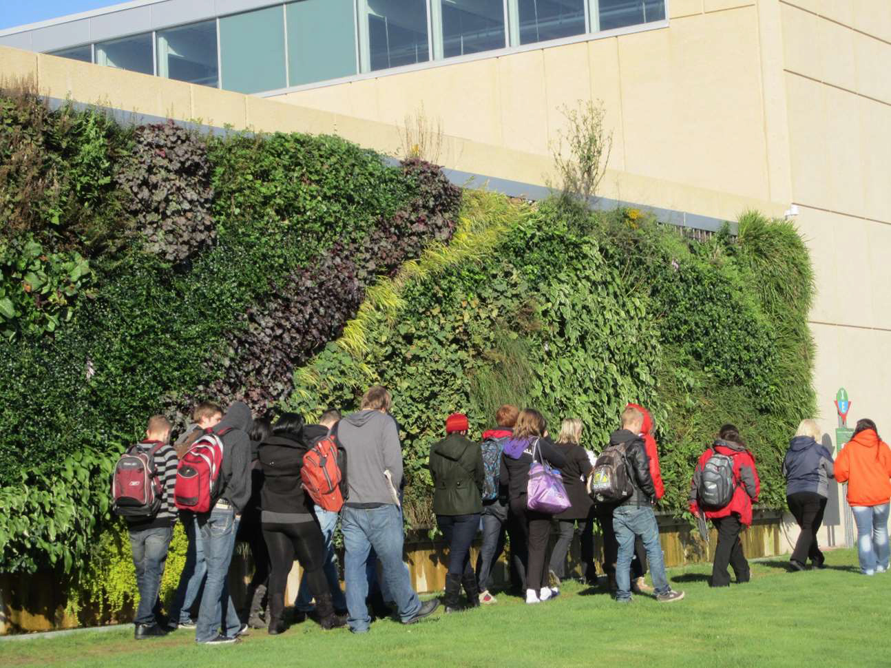P13_Awards_Design_ExteriorGreenWall_NovaScotiaCommunityCollegeLivingWall-Credit_Outside!Planning&Design.jpg