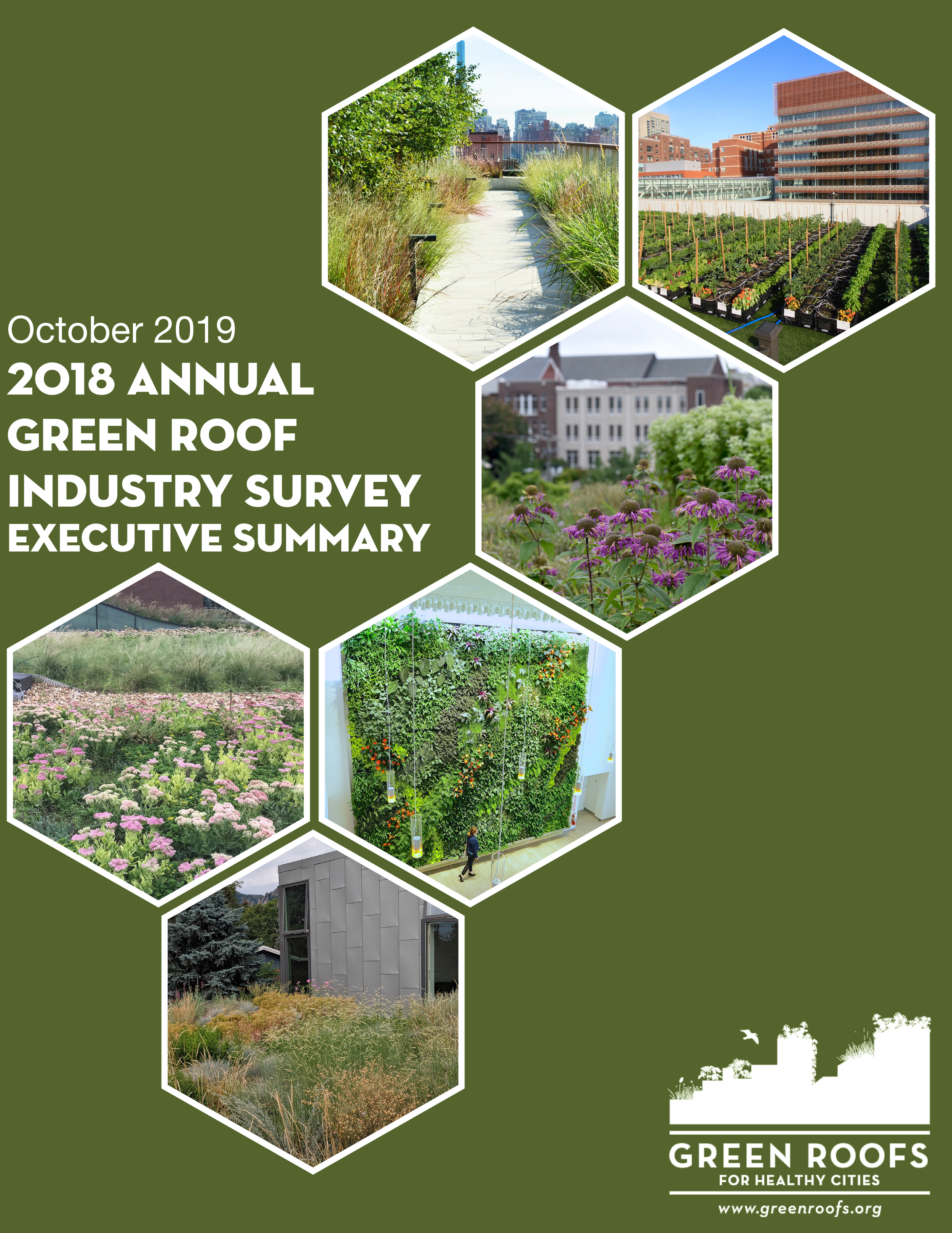 GreenRoofIndustrySurvey2019ExecutiveSummary-cover.png