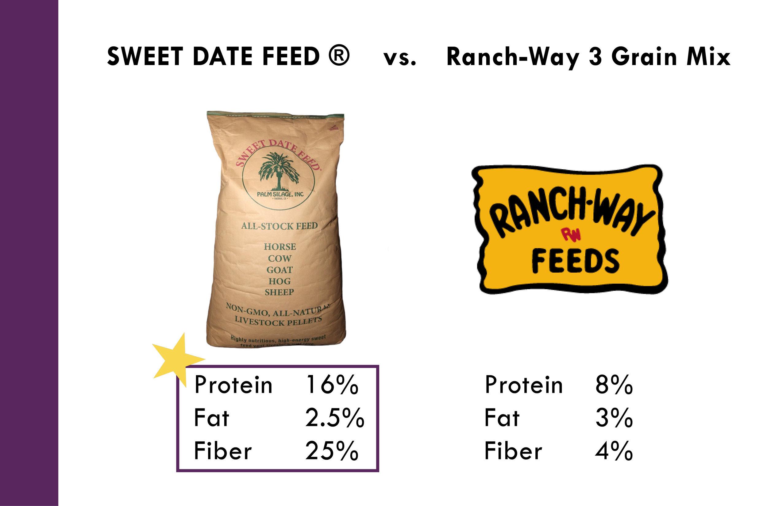 Why Sweet Date Feed_Palm Silage, Inc. 10-11-174.jpg