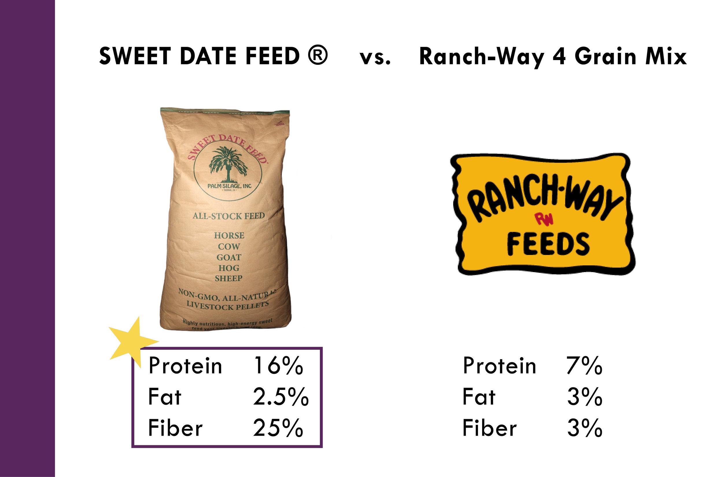 Why Sweet Date Feed_Palm Silage, Inc. 10-11-175.jpg