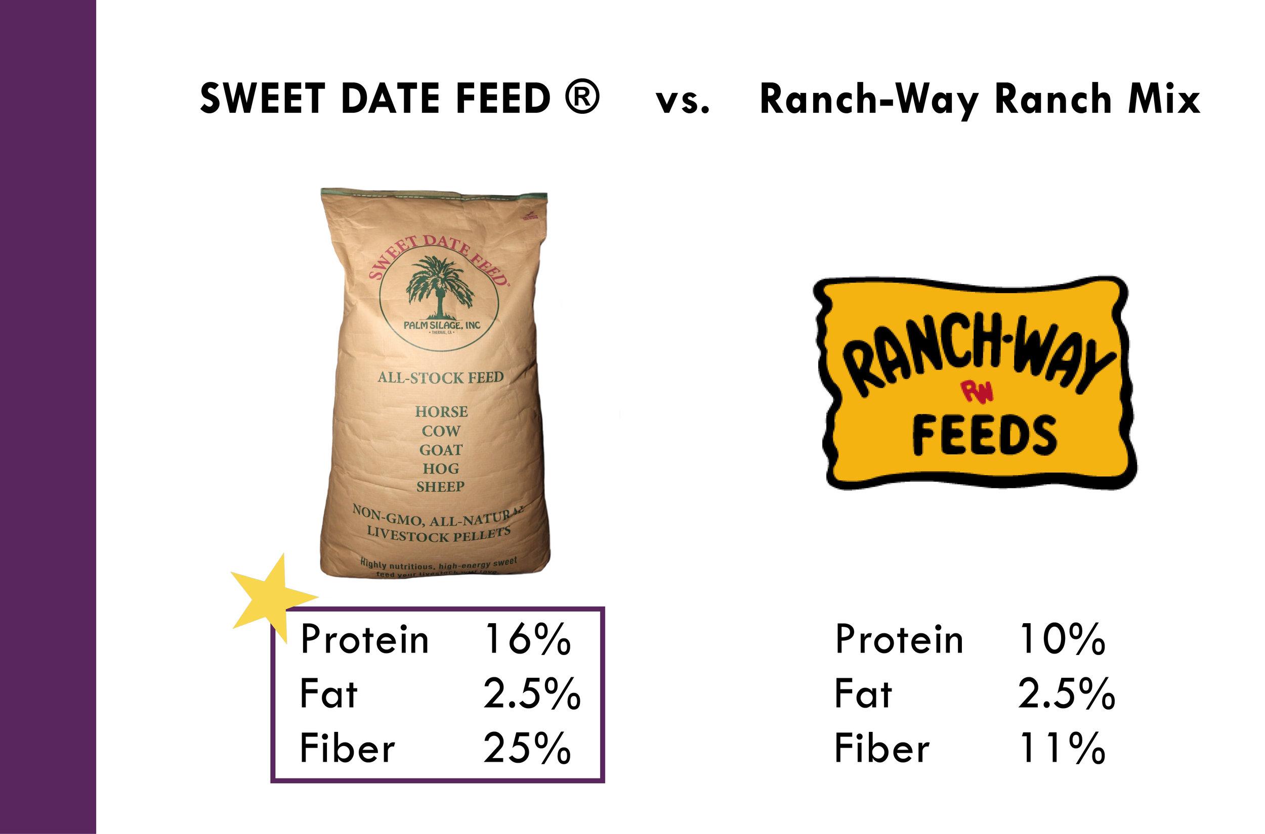 Why Sweet Date Feed_Palm Silage, Inc. 10-11-176.jpg