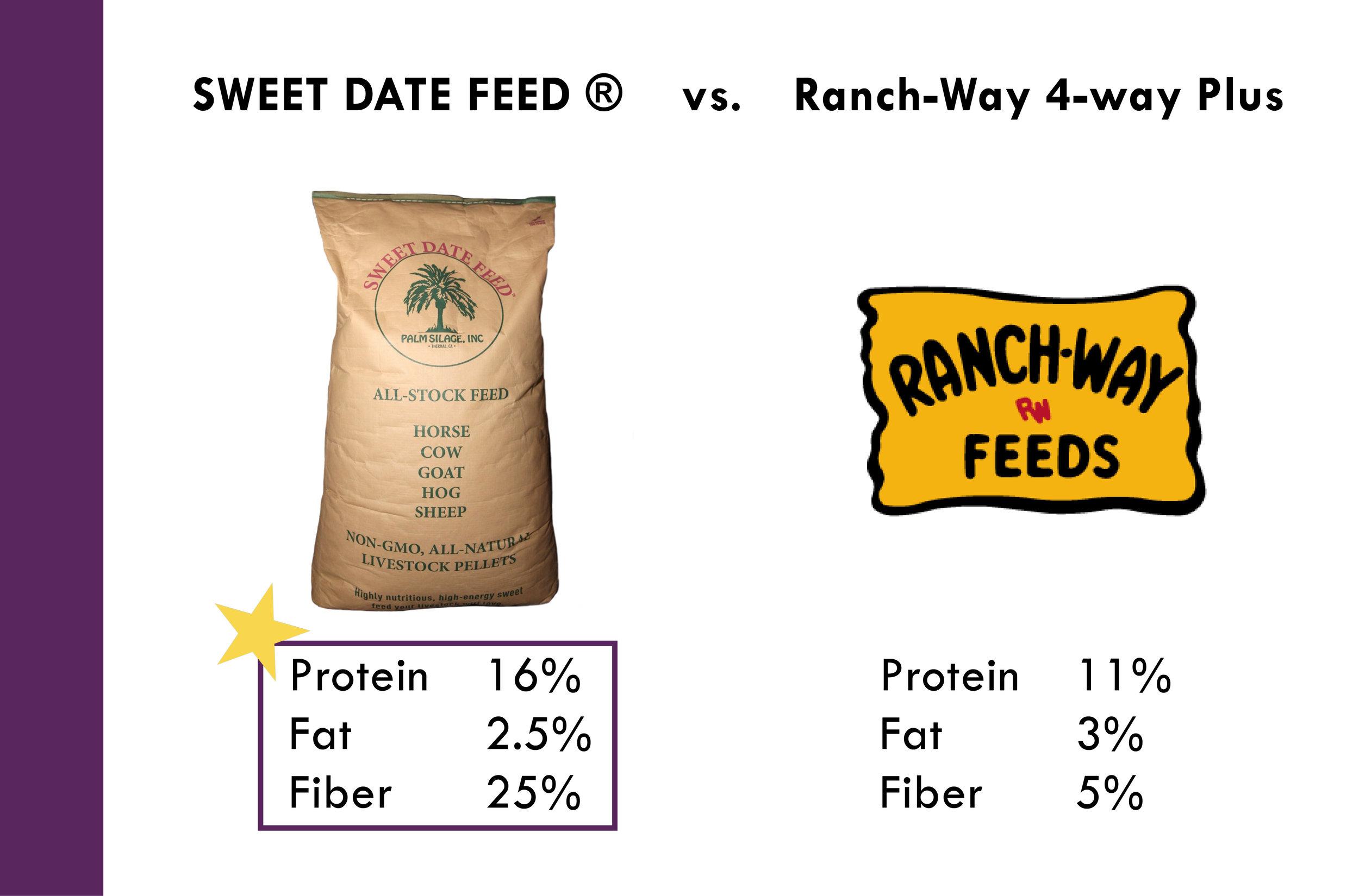 Why Sweet Date Feed_Palm Silage, Inc. 10-11-177.jpg
