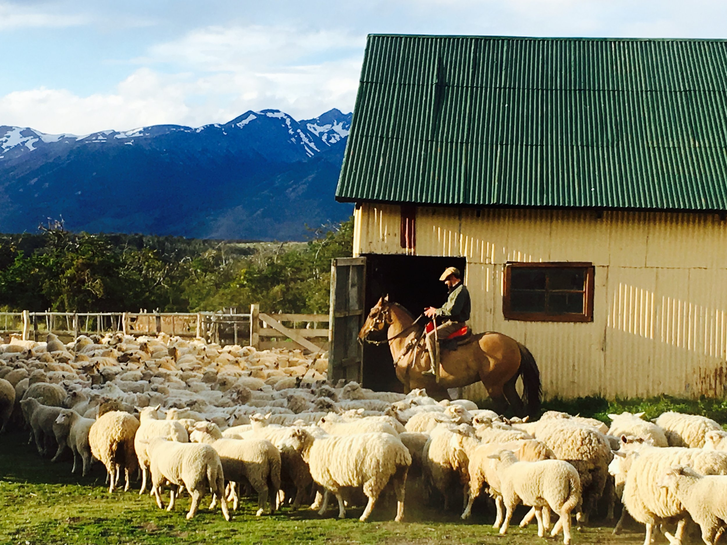 Estancia Nibepo Aike, Patagonia, Argentina