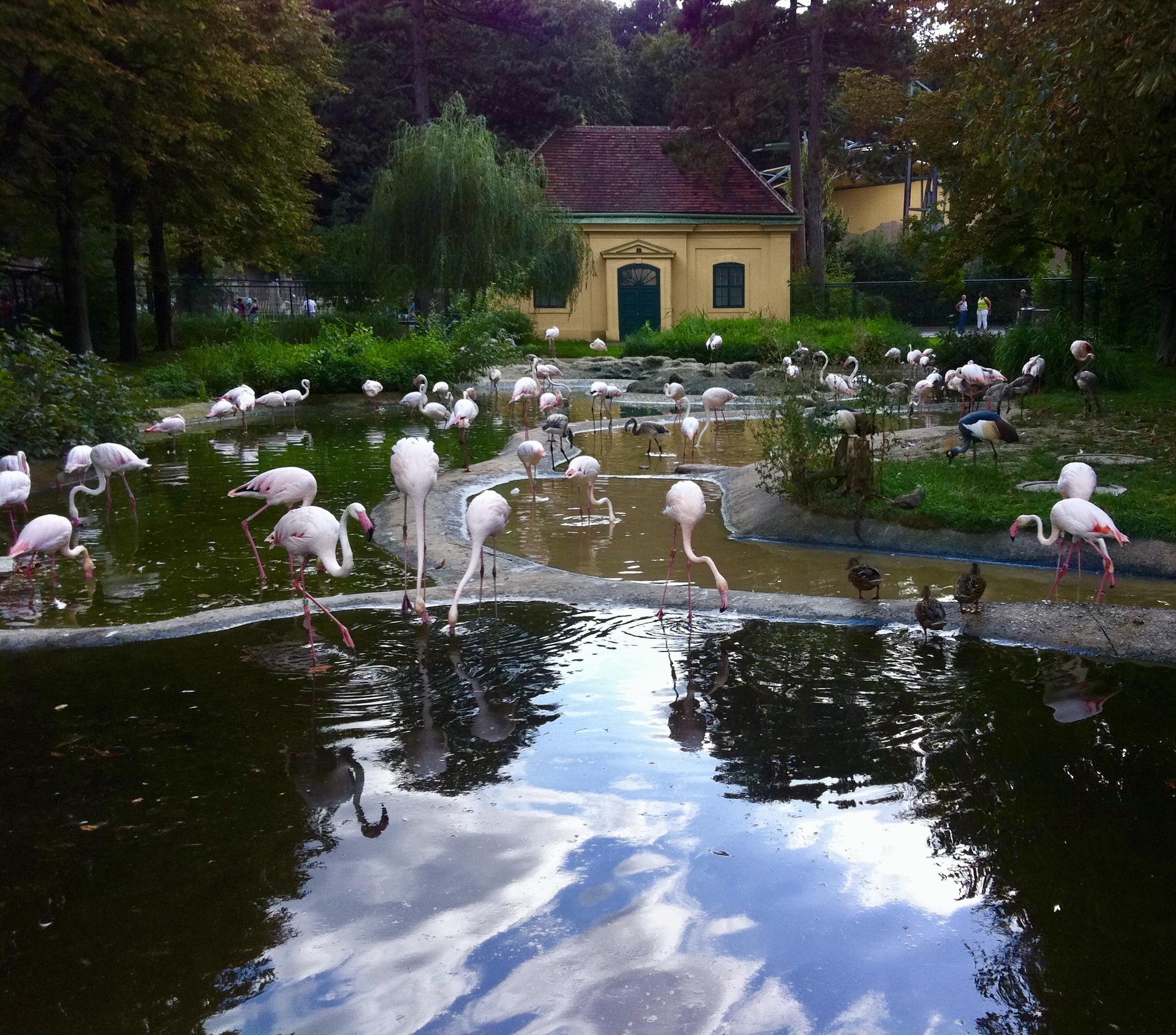 Tiergarten Schonbrunn Zoo, Vienna, Austria