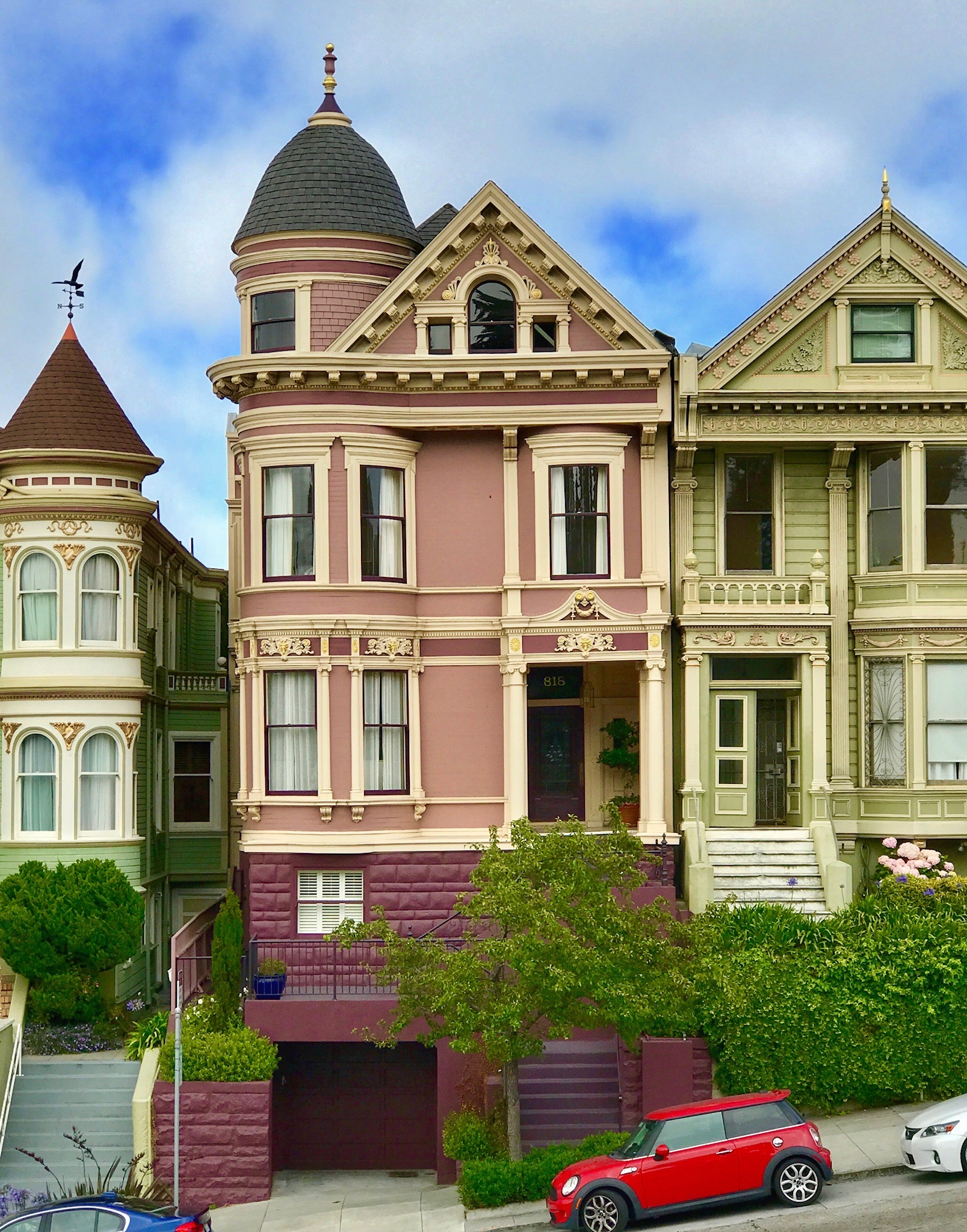 paintedladies.jpeg