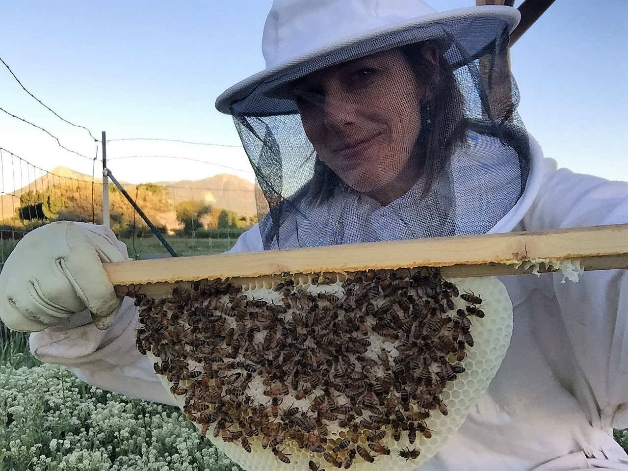 Step 2: Make It Thrive - We heart pollinators.Those tart raspberries, the sweet strawberries, that immuno-echinacea... all thrive with the help of our honey bees.They love on our ingredients...we love on them.It's a win-win.