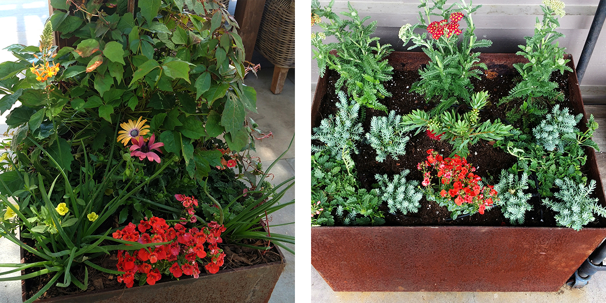 COR-TEN® STEEL PLANTERS  Adding color to a patio through a partnership of metal steel, stone, and plants. Tall and sleek, featuring a rusted patina finish and modern design, the planter is ideal as a patio accent. Crafted from a thick gauge, fully seam welded COR-TEN® steel base, all planters are proven to resist weather related issues such as cracking in both winter and summer months. Warm colors echoed in the plants within the planter contrast well with the gray of the siding and the blue-grey of the stone .