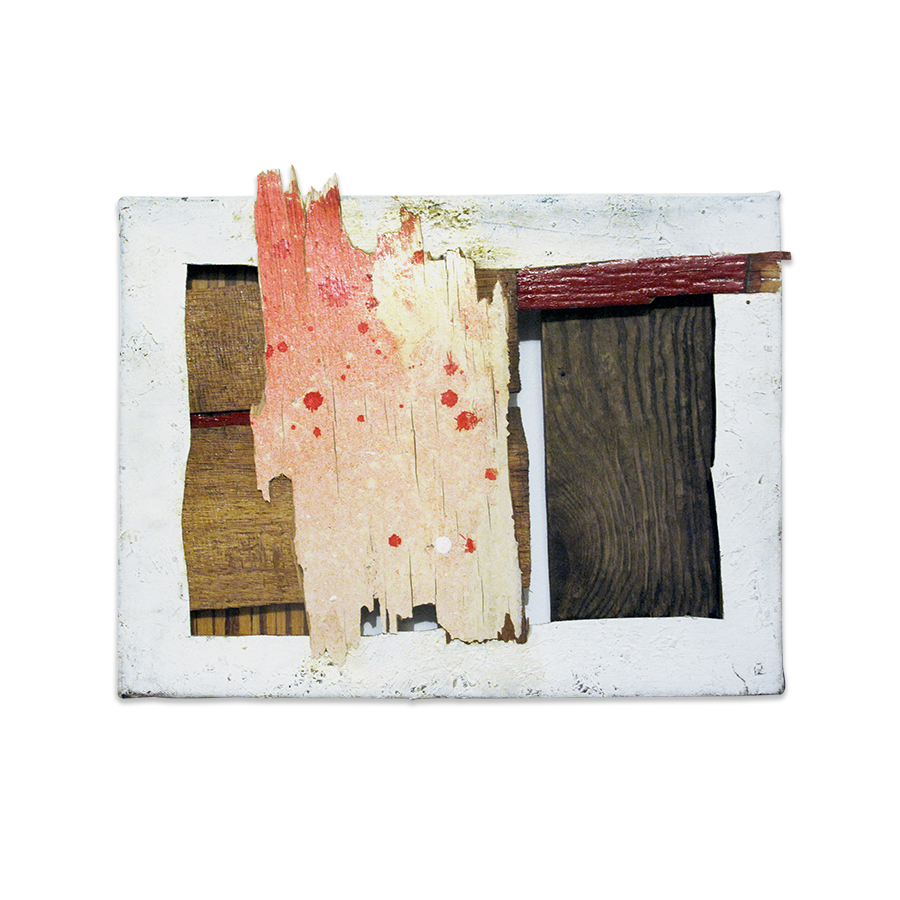 STUDIO BISCUIT 2013 found wood and canvas 16 x 12.5 in