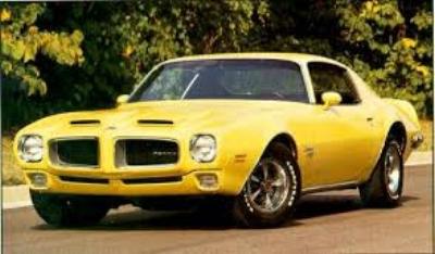 The  1970 1/2 Pontiac Formula Firebird  was like an Italian Exotic -a supercar for the everyman. ( www.firebirdgallery.com )