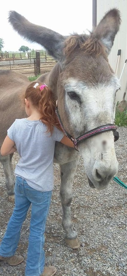 Animal Sanctuary and Learning Center - At Harmony Acres we love animals of all kinds, not just horses