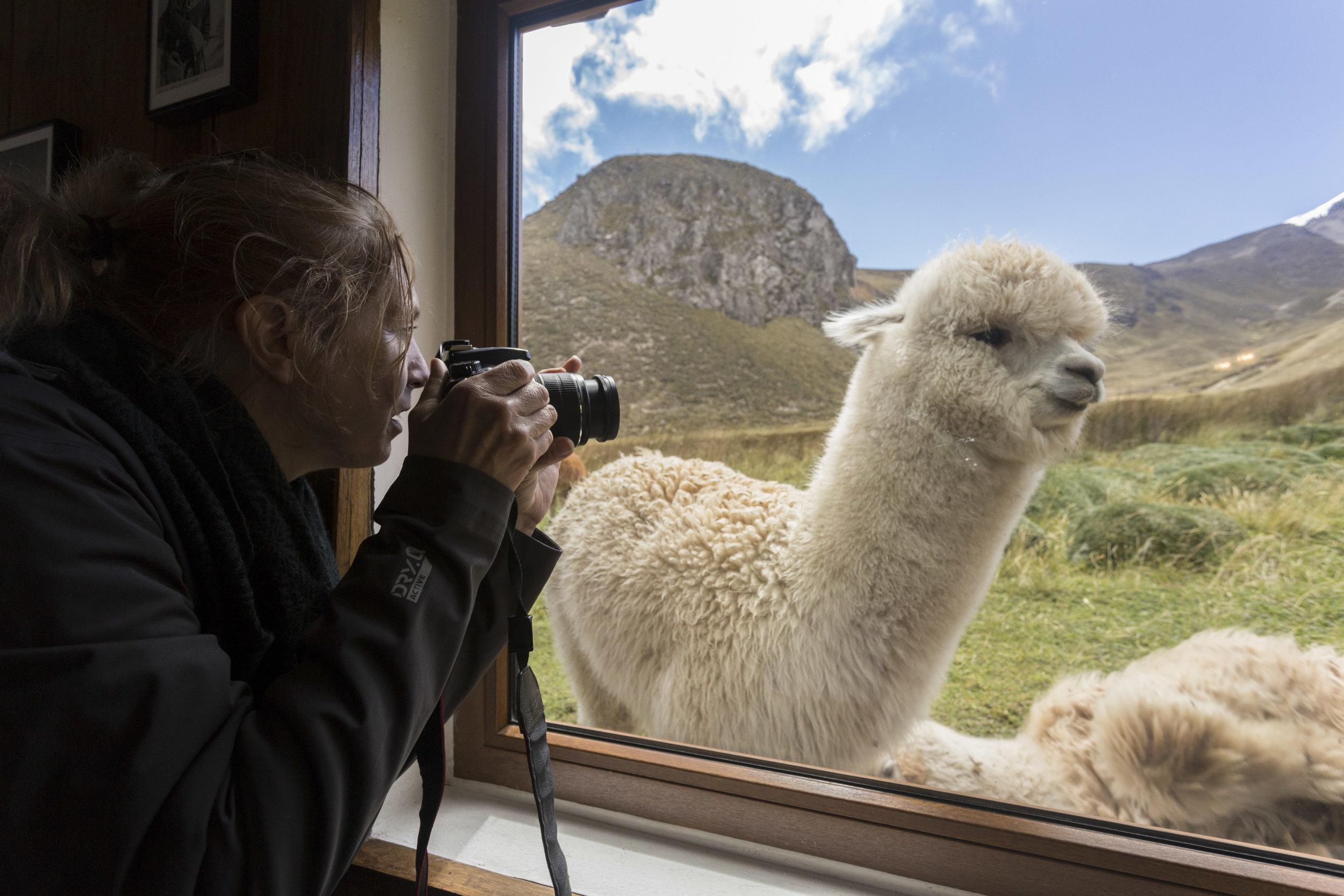 Peggy photographing at Chimborazo