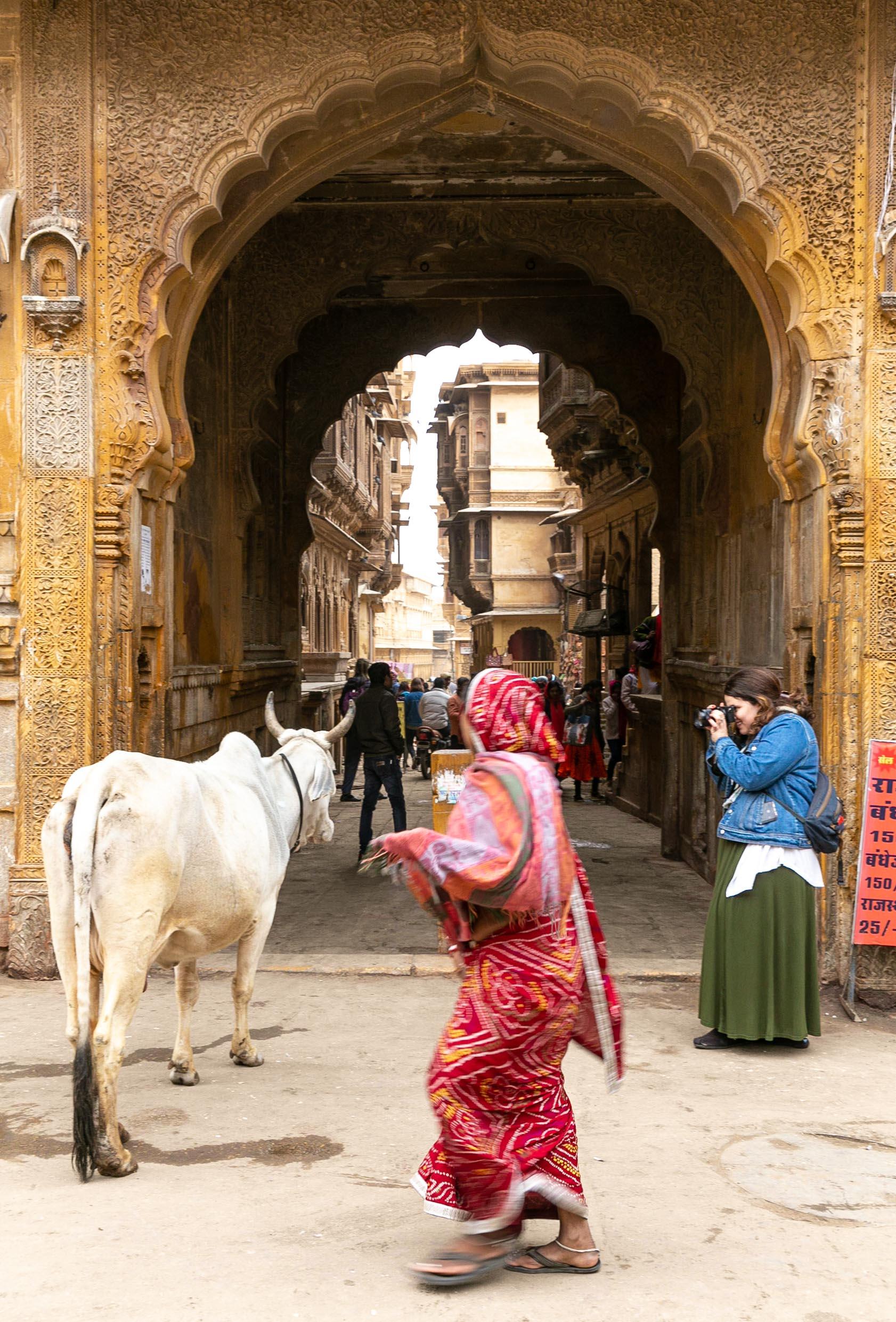 India-Wanderful-3-2019-55.jpg