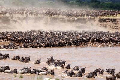 Tanzania-6.jpg